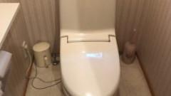 既設:INAX(LIXIL)製のタンク付きシャワートイレ DT-3573