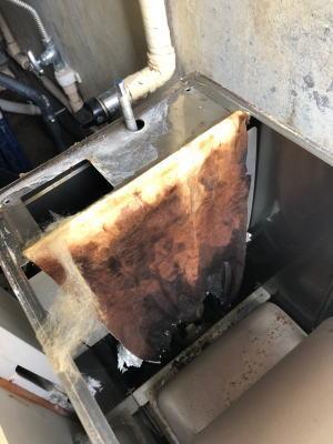 今回まさに排水詰まりで風呂釜が冠水し、風呂釜内部が焼損していました